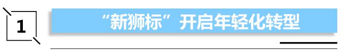 上汽荣威开启双标战略 背后到底意欲何为-图5