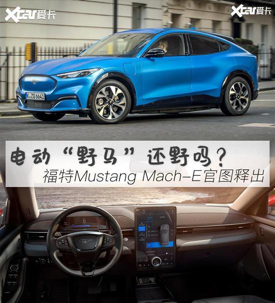 "图解福特Mustang Mach-E 电动""野马"""